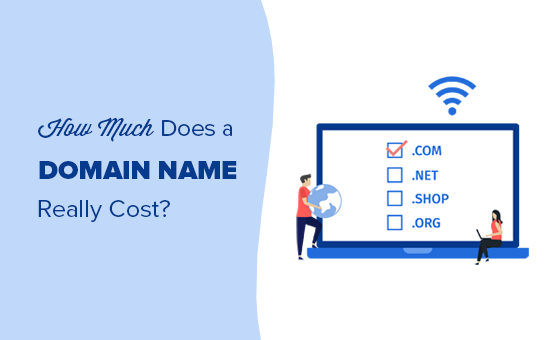 How much does a domain name really cost