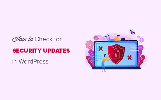 How to check for WordPress security updates