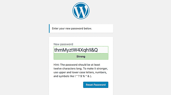 Enter a new password for your WordPress account