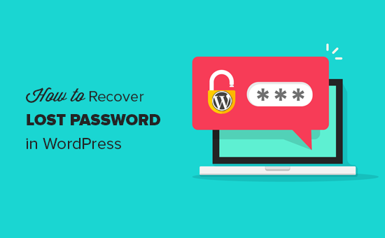 How to recover lost password in WordPress