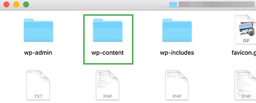 wp-content folder in the root directory of a WordPress site